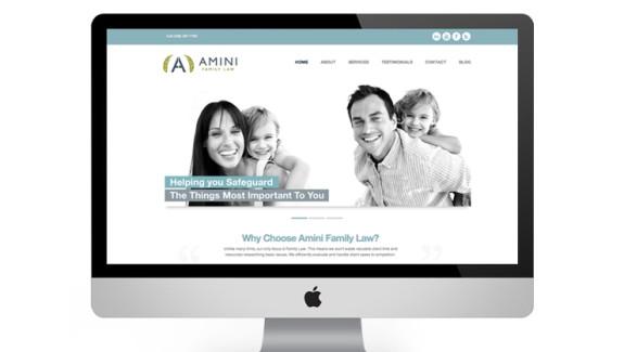 AminiLaw_Website